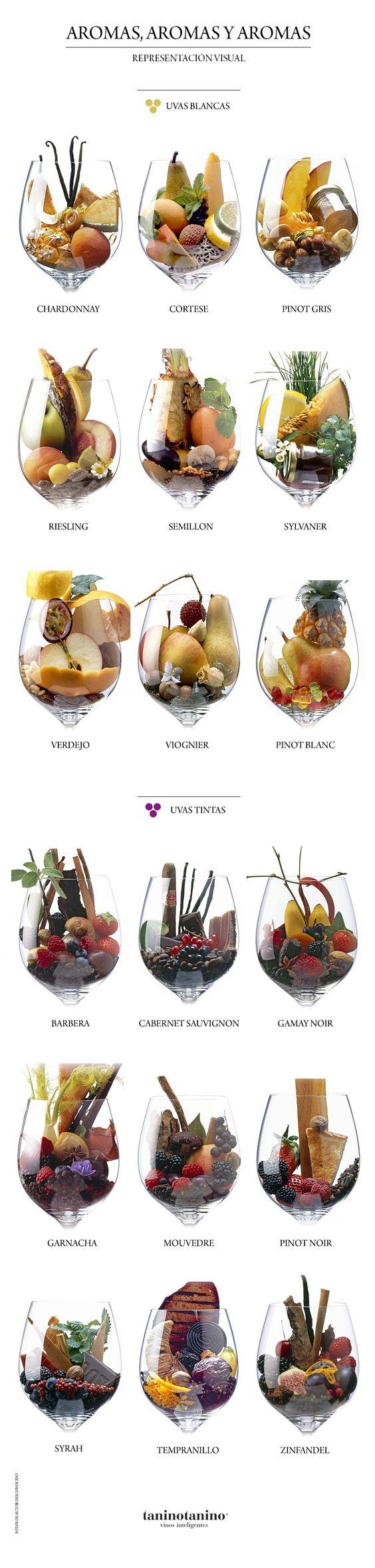 Aromas e sabores, com essa tabelinha fica mais fácil harmonizar.